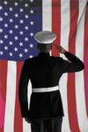 Veterans_day_salute1